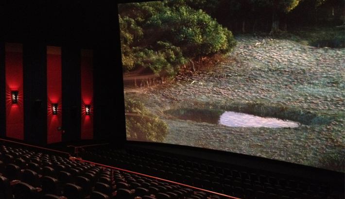 One of the six large auditorium featuring our AVX projection, 85 foot screen and also introducing our VIP seating area in the back of the auditorium with in theatre service.