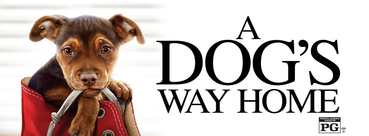 Dogs Way Home A