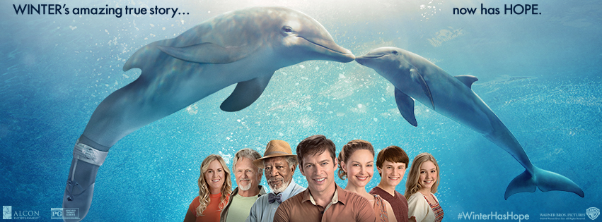 Dolphin Tale 2-Now Showing