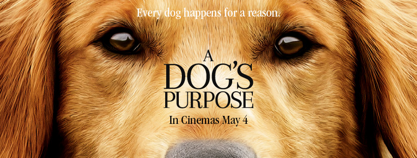 A-Dogs-Purpose-Trailer-and-Info