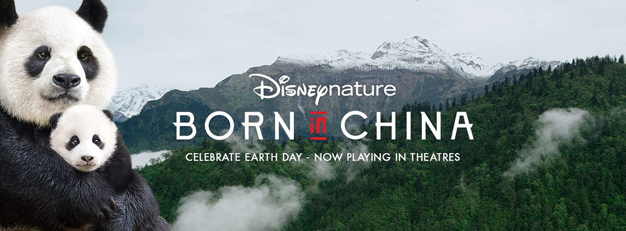 Born-in-China-Trailer-and-Info
