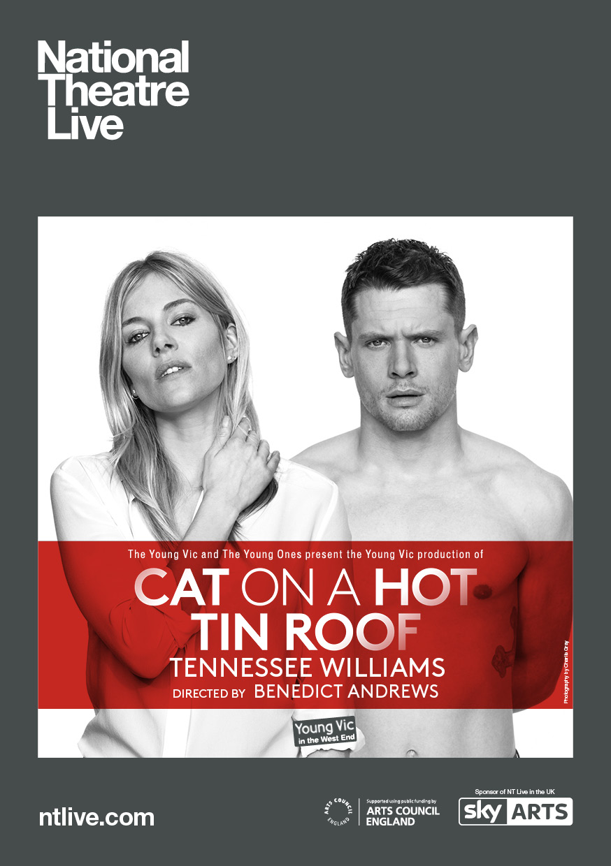 the portrayal of sexuality in tennessee williams play cat on a hot tin roof and a streetcar named de