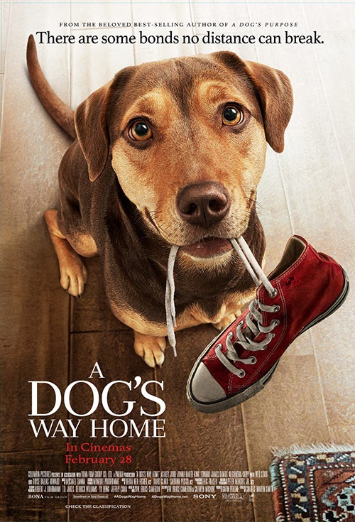Poster of A Dog's Way Home