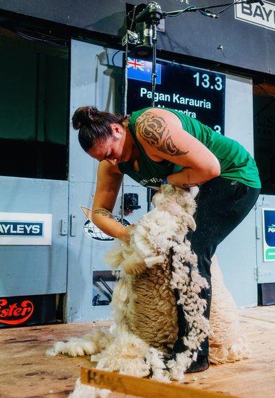 Image 2 for She Shears