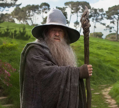 Image 2 for McKellen: Playing the Part