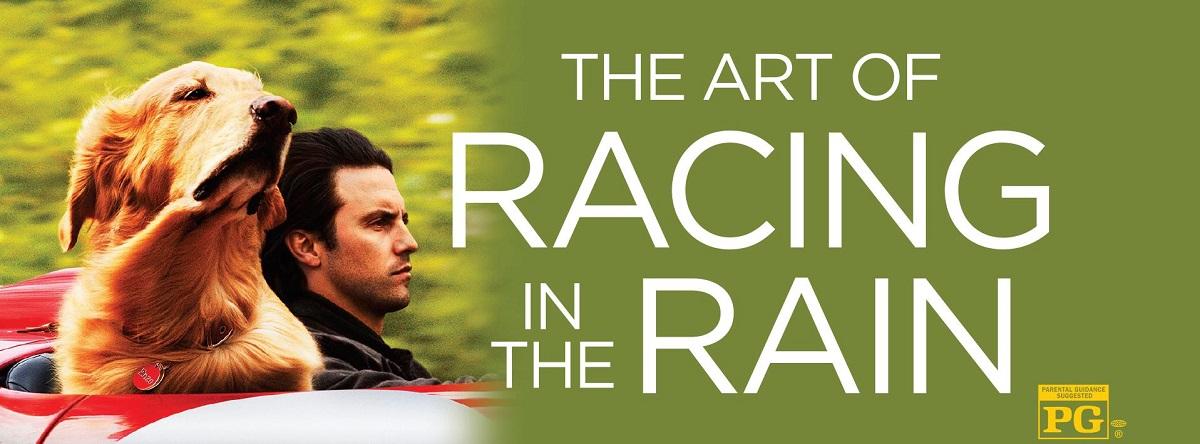 Art of Racing in the Rain The