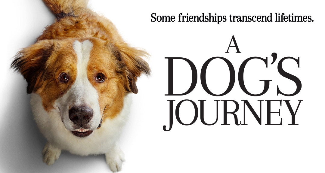 A-Dogs-Journey