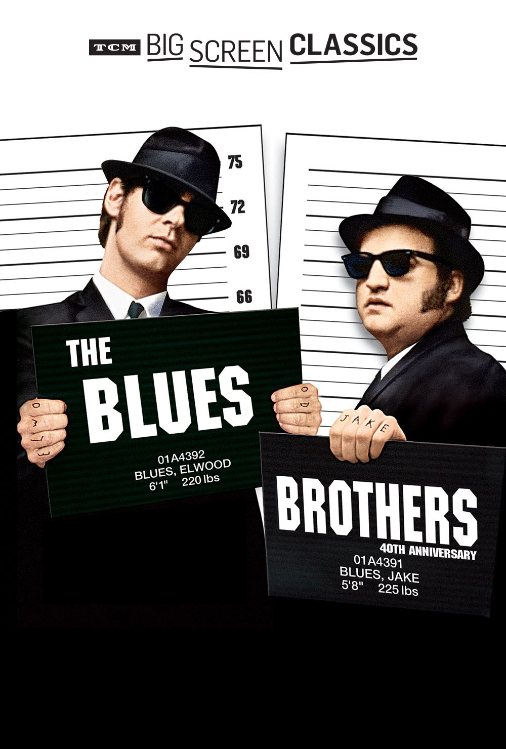 Blues Brothers (198...