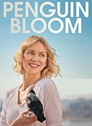 Poster of Penguin Bloom
